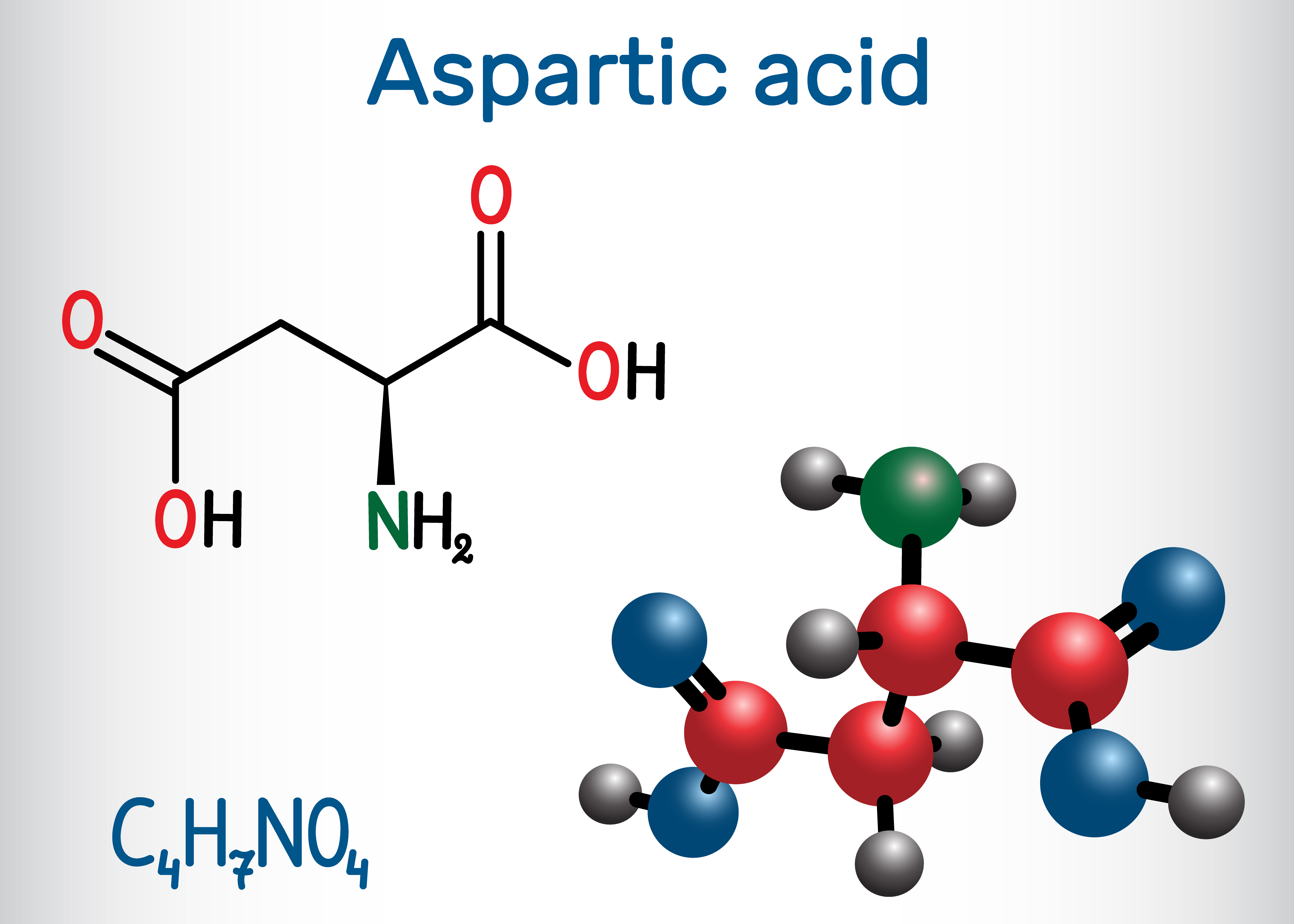 Wzór kwasu D-asparaginowego